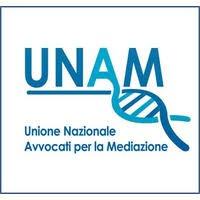 Comunicato del Comitato Esecutivo UNAM sulla proposta di riforma del processo civile